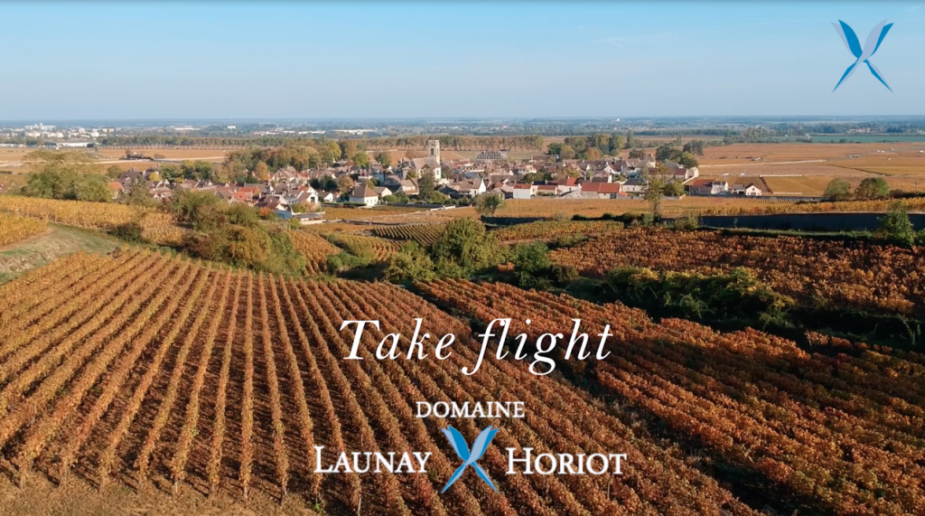 Wines of Domain Launay Horiot, offered by Stannary Wines